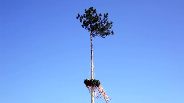 maypole in austria - traditionally austrian stock videos and b-roll footage