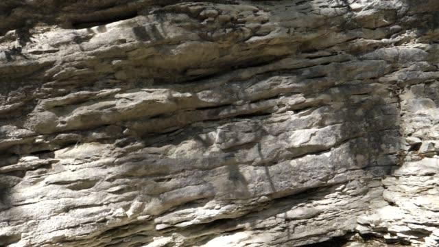 vídeos de stock, filmes e b-roll de labirinto das rochas (cáucaso ocidental) - rocha