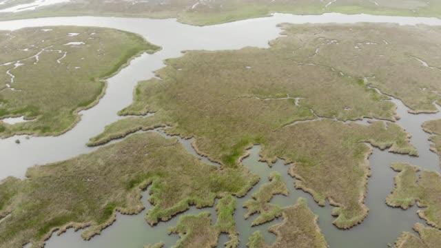 maze of reeds in dalyan, mugla, turkey - dalyan stock videos and b-roll footage