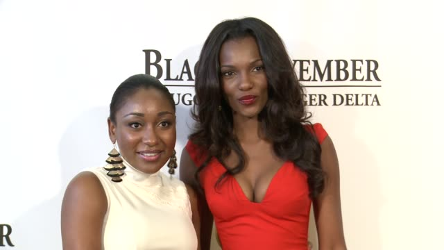 mbong amata and agbani darego at black november screening in washington dc at the john f kennedy center for performing arts on may 08 2012 in... - john f. kennedy center for the performing arts stock videos & royalty-free footage