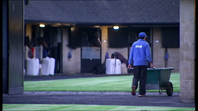 mccoy training and interview; england: gloucestershire: ext general views of racecourse at sunrise / general views of horses at stables / stable... - 厩舎点の映像素材/bロール