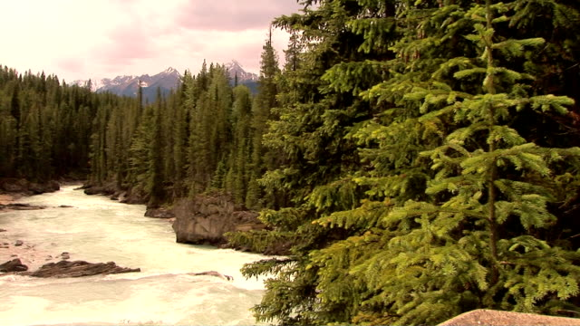 mcdonald creek, glacier national park, montana - mcdonald creek stock-videos und b-roll-filmmaterial