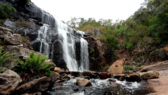 mckenzie fall, grampians national park, australia - victoria australia stock videos & royalty-free footage