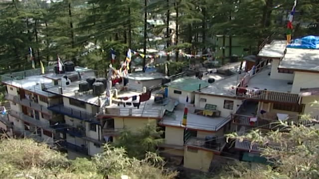 mcleod ganj. high angle view of densely packed residential buildings with tibetan flags on their rooftops. mcleod ganj is the home of the dalai lama. - pinaceae stock videos & royalty-free footage
