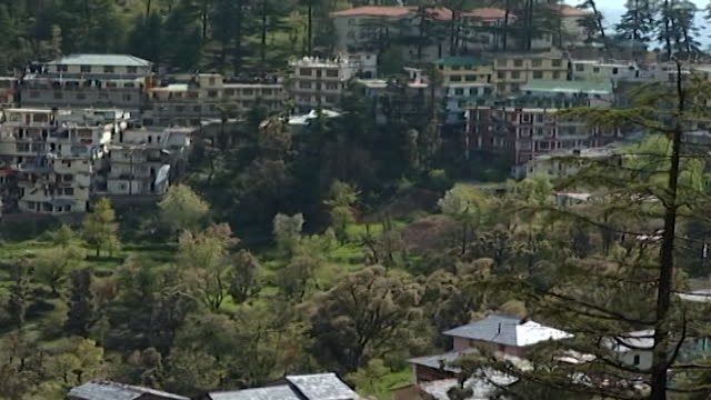 vídeos de stock e filmes b-roll de mcleod ganj. view of the village nestled on a hill, which is the home of hh the dalai lama. - pinaceae