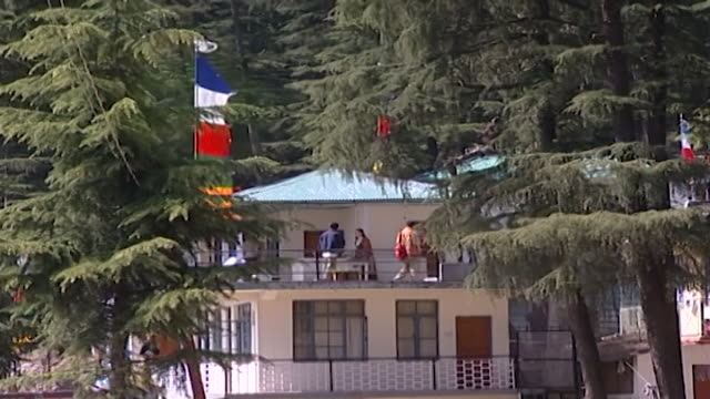 mcleod ganj. view of tibetan refugees on the upper balcony of their house surrounded by fir trees. - pinaceae stock videos & royalty-free footage