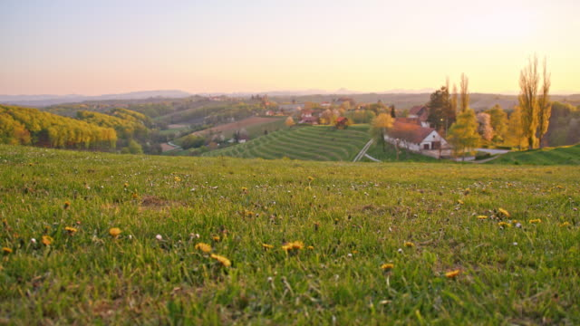 meadow above the village - slovenia meadow stock videos & royalty-free footage
