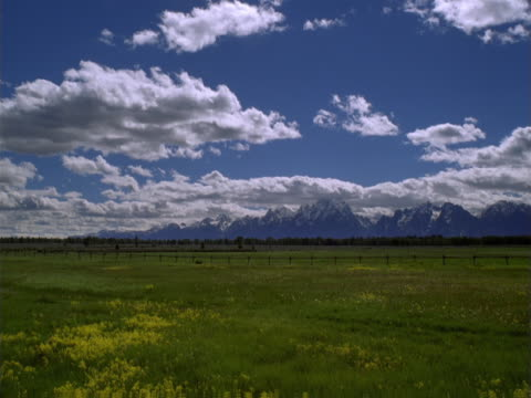meadow and clouds - alm stock-videos und b-roll-filmmaterial