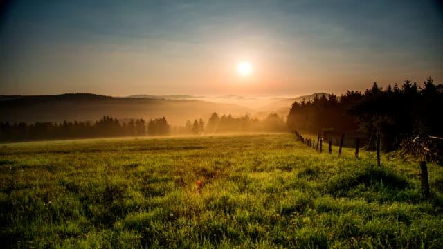 CRANE DOWN: Meadow bei Sonnenaufgang mit Nebel