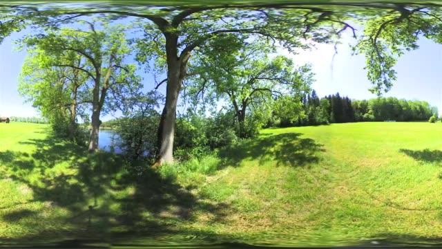 360 vr: meadow in spring - ベルヒテスガーデナーランド点の映像素材/bロール