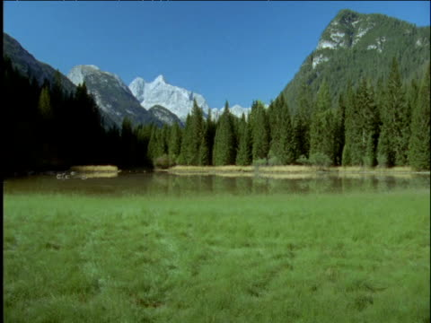 meadow lake and dolomite mountains italy - ムラがある点の映像素材/bロール