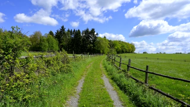 meadow path in spring, mülben, waldbrunn, odenwald, baden-württemberg, germany - rand stock-videos und b-roll-filmmaterial