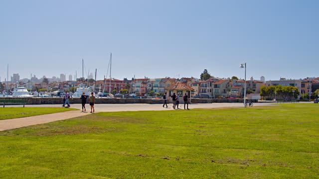 meadow. san francisco. marina. - san francisco bay stock videos & royalty-free footage