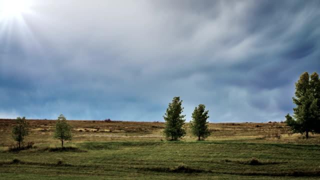 meadow - polarizer stock videos & royalty-free footage
