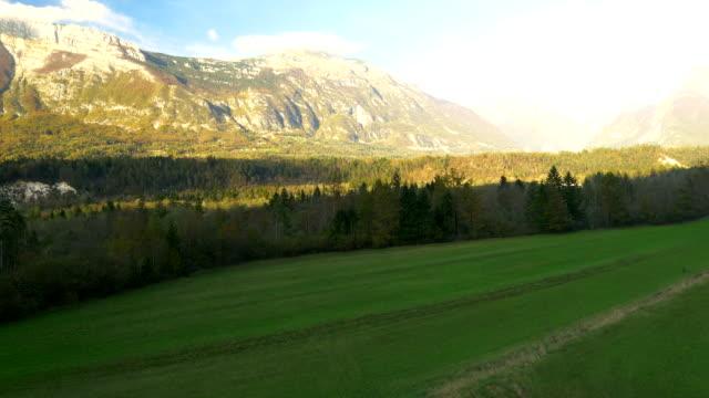 空から見た草地、山々を背景にした