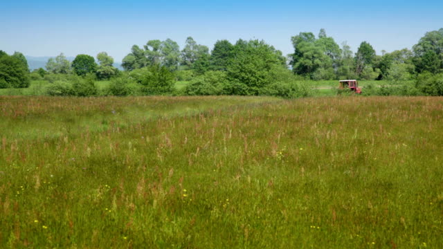 hd: meadow with tractors in distance - bailing hay stock videos & royalty-free footage
