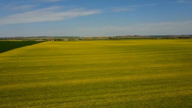 上から牧草地 - 見渡す点の映像素材/bロール