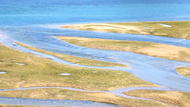 meanders in the intertidal zone - low tide stock videos & royalty-free footage