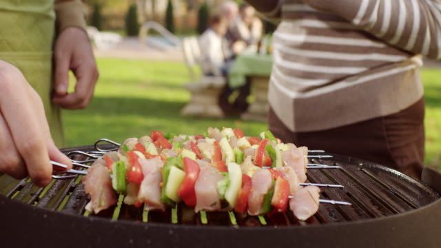 meat and vegetables on a grill - kebab stock videos and b-roll footage