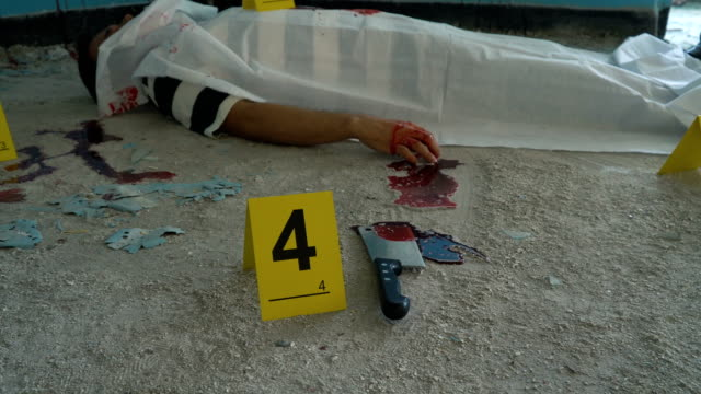 meat cleaver in crime scene - knife crime stock videos & royalty-free footage