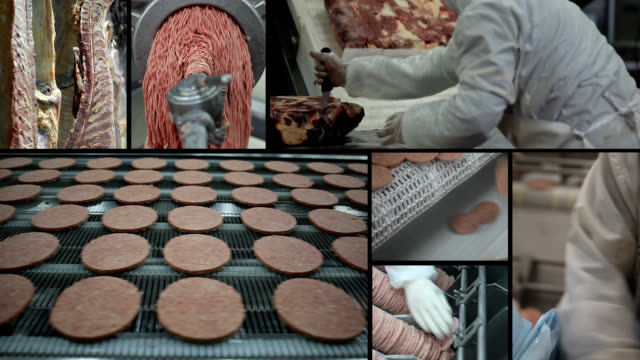 meat factory - hamburger stock videos & royalty-free footage