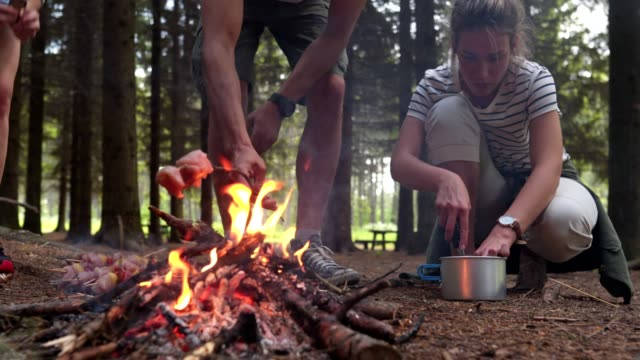meat is the best survival food - open fire stock videos & royalty-free footage