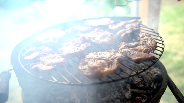 meat on the grill - grigliare video stock e b–roll