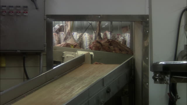 vidéos et rushes de ms zo meat piled up around meat packing plant, chicago, illinois, usa - viande