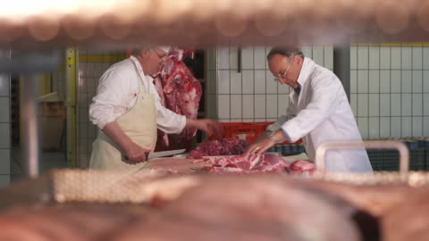 meat processing, pull focus - raw food stock videos & royalty-free footage
