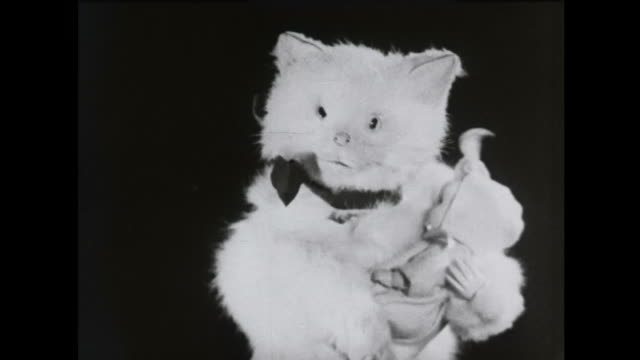 1939 mechanized cat toy cuddles doll - doll stock videos & royalty-free footage