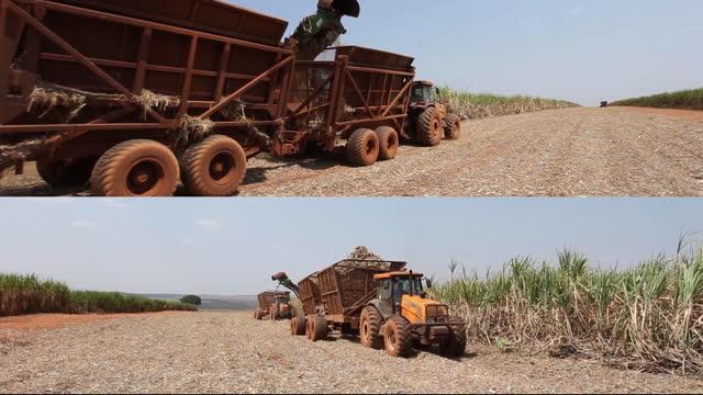 mechanized harvesting of sugar cane plantation in sao paulo country side, brazil - spray stock videos & royalty-free footage