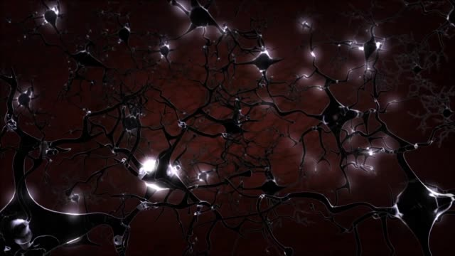 3d medical animation - brain cells - human nervous system stock videos & royalty-free footage