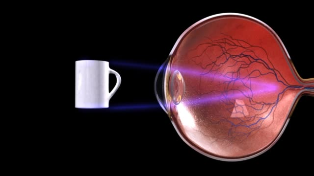 3d medical animation - function of lens - cranial nerve stock videos & royalty-free footage
