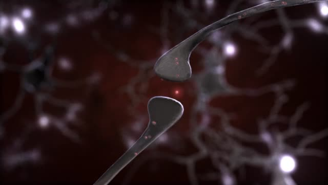 3d medical animation - neuron (nerve cell) - human nervous system stock videos & royalty-free footage