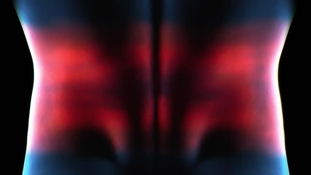 腰痛を持つ男の医療アニメーション。ストックビデオ 腰背椎痛のx線骨格アニメーション - 頸椎点の映像素材/bロール
