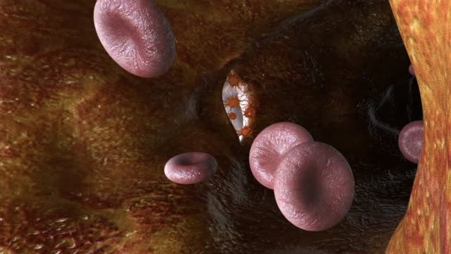 3d medical animation - platelet - biomedical animation stock videos & royalty-free footage