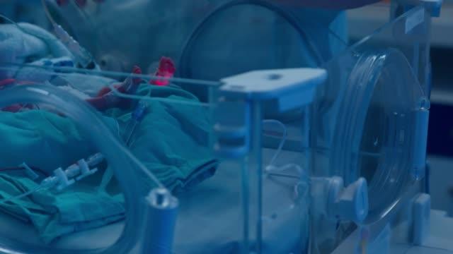 ärztliche untersuchung eines frühgeborenen auf der intensivstation - krankenpflegepersonal stock-videos und b-roll-filmmaterial