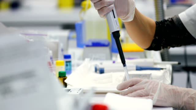 medical laboratory work. - pipette stock videos & royalty-free footage
