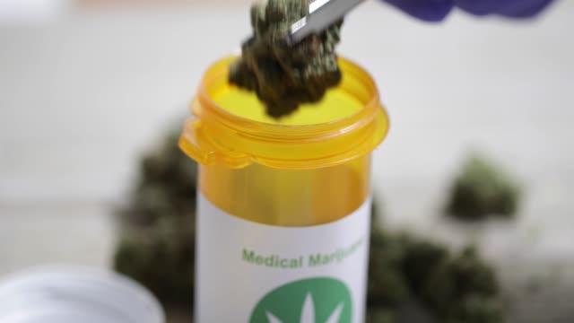 vídeos de stock e filmes b-roll de medical marijuana - 4k - charro