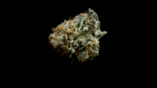 medical marijuana - mull stock videos & royalty-free footage