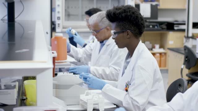 medizinischer forscher lädt zentrifuge - zentrifuge stock-videos und b-roll-filmmaterial