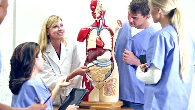 stockvideo's en b-roll-footage met geneeskundestudenten in anatomie klasse met instructeur - anatomie