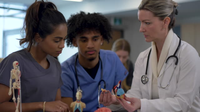 medical students in classroom - post secondary education stock videos & royalty-free footage