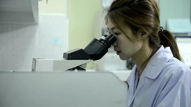 vídeos de stock e filmes b-roll de médicos técnico a trabalhar no laboratório do hospital olhando através do microscópio com - porta amostra