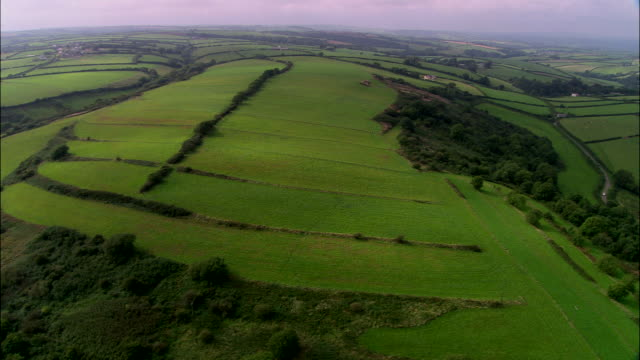 Medieval Field System, Laugharne