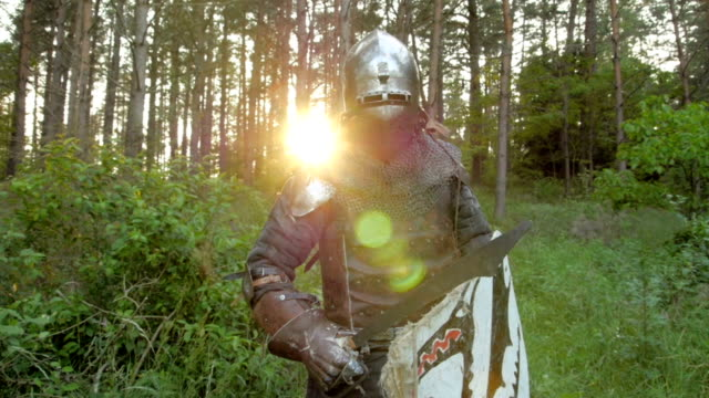medieval knights - knight person stock videos and b-roll footage