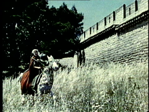 recreation, ws, pan, medieval noblewoman riding horse through gassy field - question mark stock videos & royalty-free footage