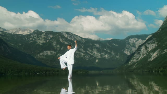 vídeos de stock, filmes e b-roll de grou hd: meditação na natureza - karate