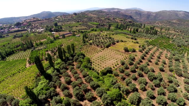 mediterranean landscape from air - vineyard stock videos & royalty-free footage