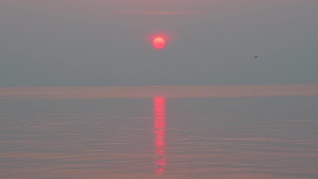 mediterranean sea at sunrise, punta sabbioni, venice, venetian lagoon, mediterranean sea, veneto, italy - horizon点の映像素材/bロール